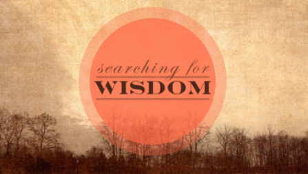 Searching for Wisdom
